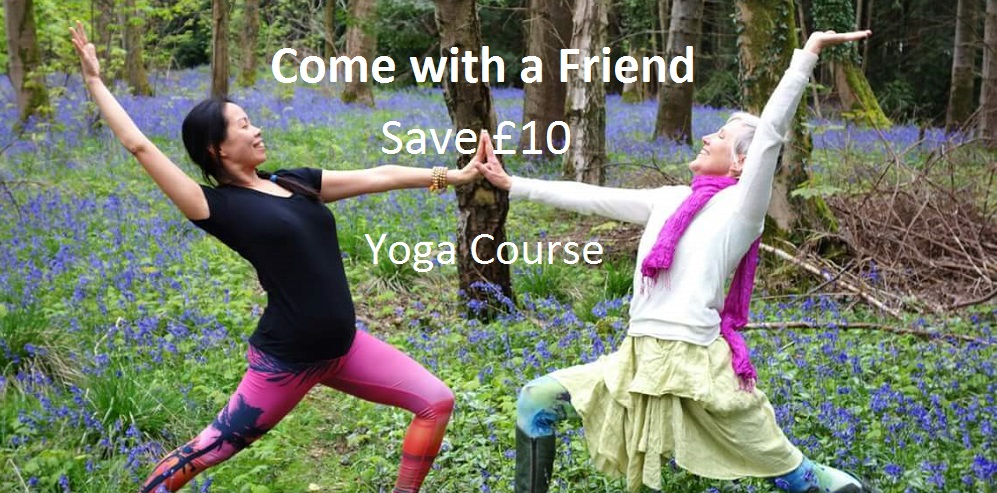 Come with a friend yoga crop